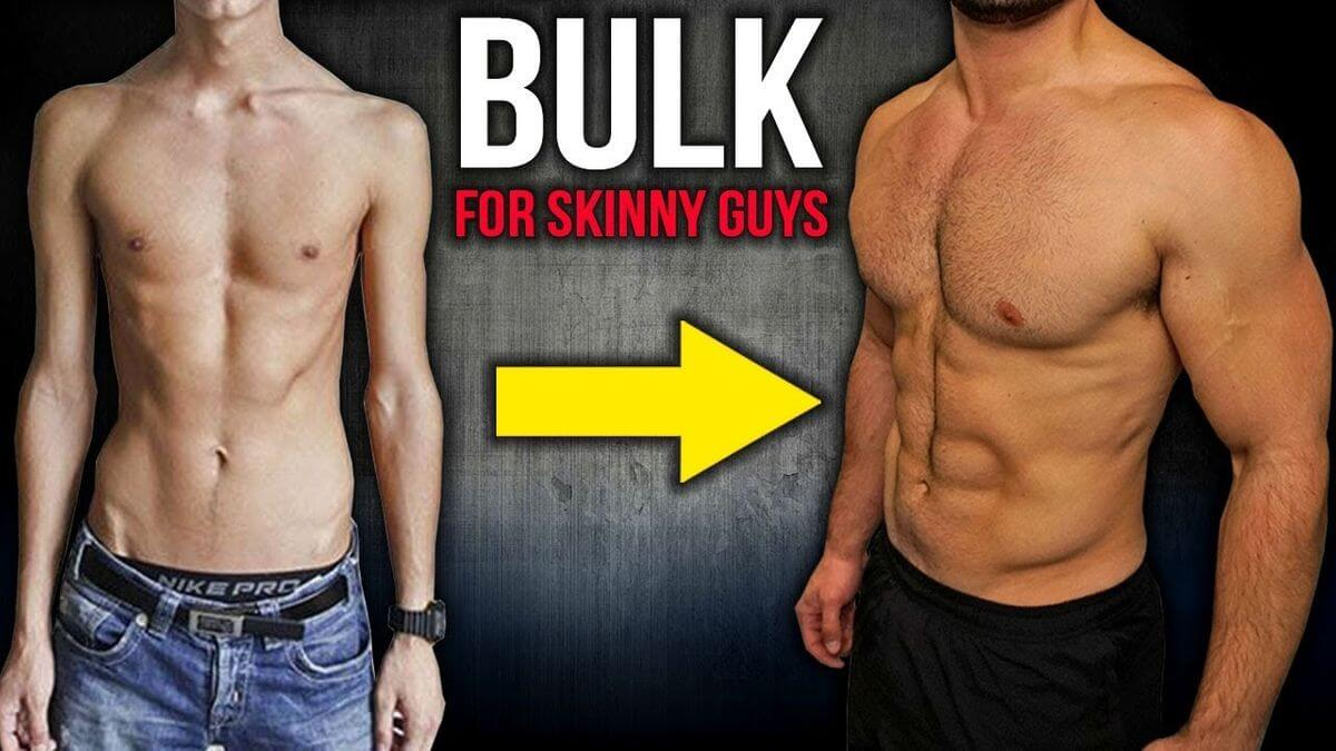 Best Protein For Skinny Guys To Bulk Up