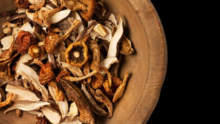 Mushroom Supplements For Immune System Boosting