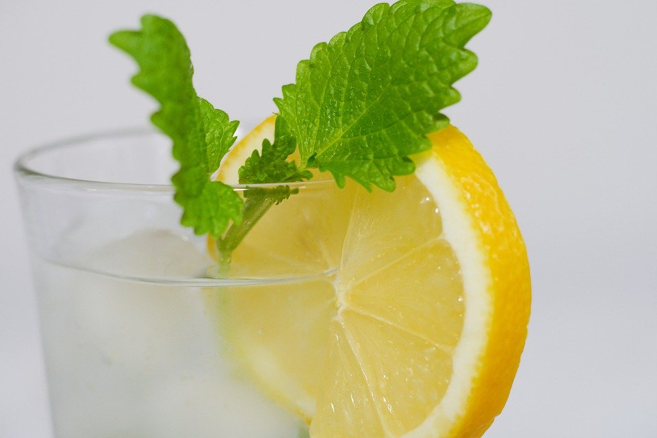 Benefits of Lemon Water To Your Body