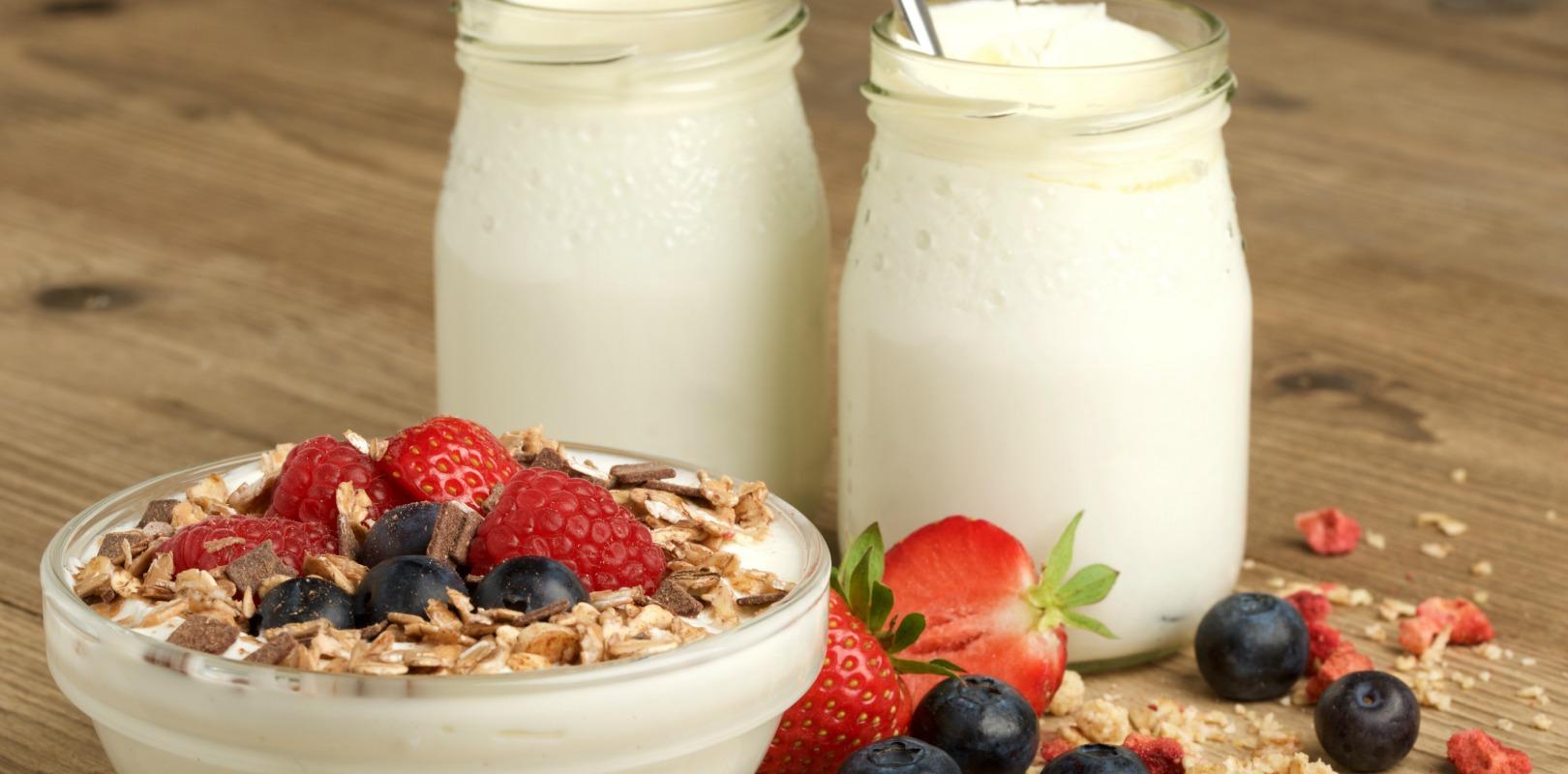 yogurt good for immune system